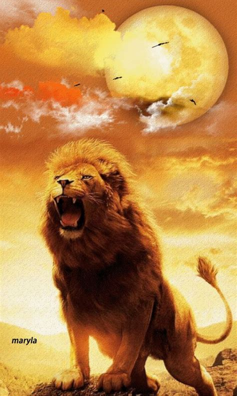 The Lion of Judah!! Click gif to see movement | He's The