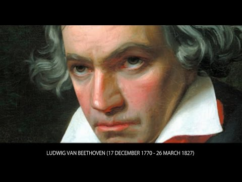 Baby Beethoven   The REAL Baby Einstein Wikia   Fandom